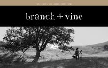 Branch + Vine